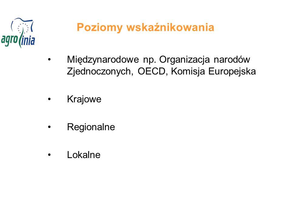 Poziomy wskaźnikowania Międzynarodowe np. Organizacja narodów Zjednoczonych, OECD, Komisja Europejska Krajowe Regionalne Lokalne