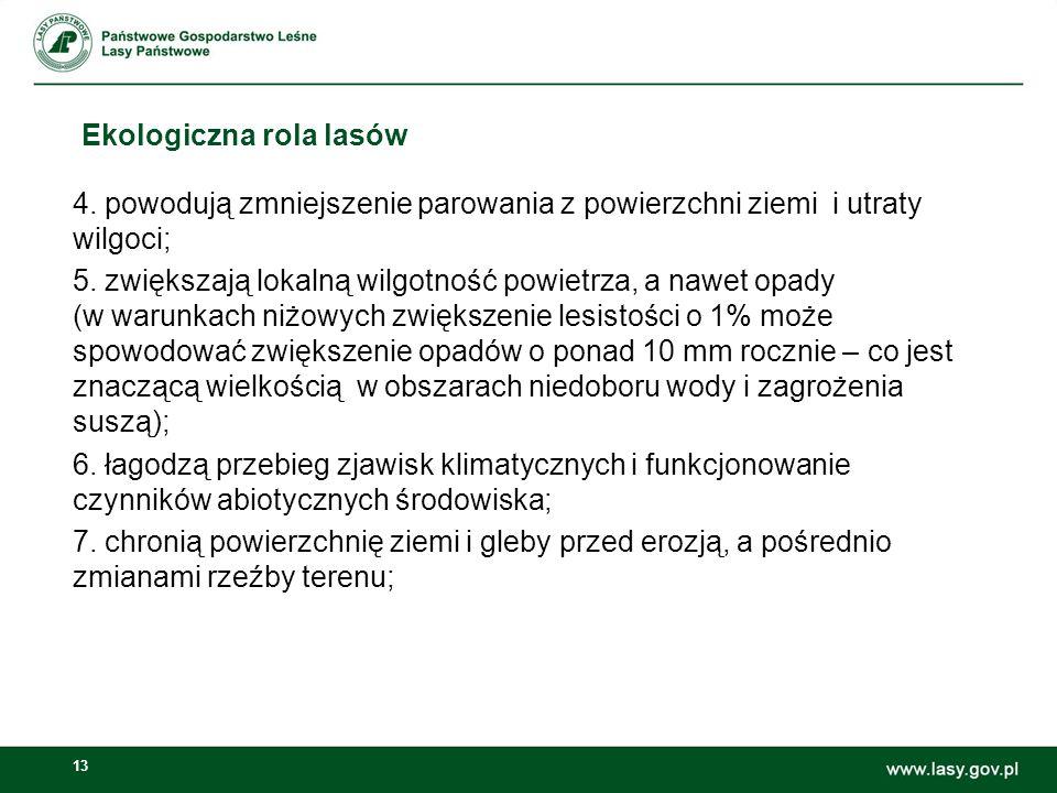 13 Ekologiczna rola lasów 4.