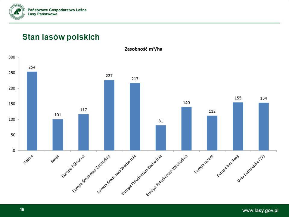 16 Stan lasów polskich