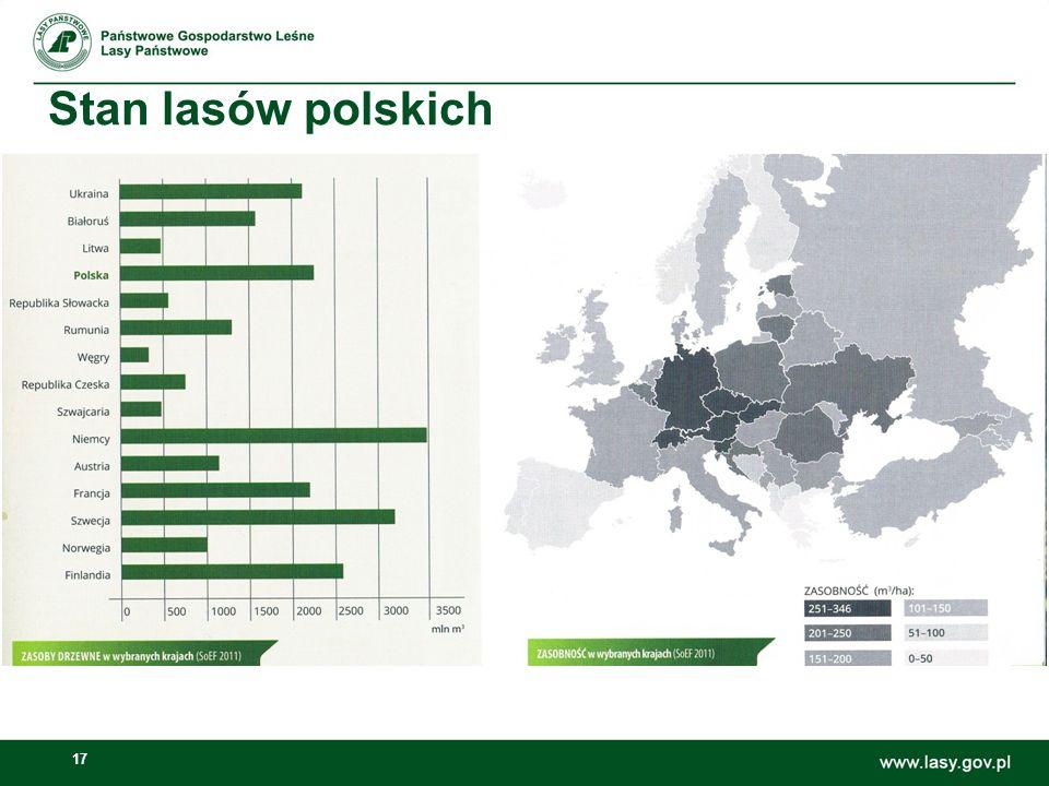 17 Stan lasów polskich