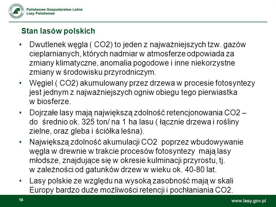 18 Stan lasów polskich Dwutlenek węgla ( CO2) to jeden z najważniejszych tzw.