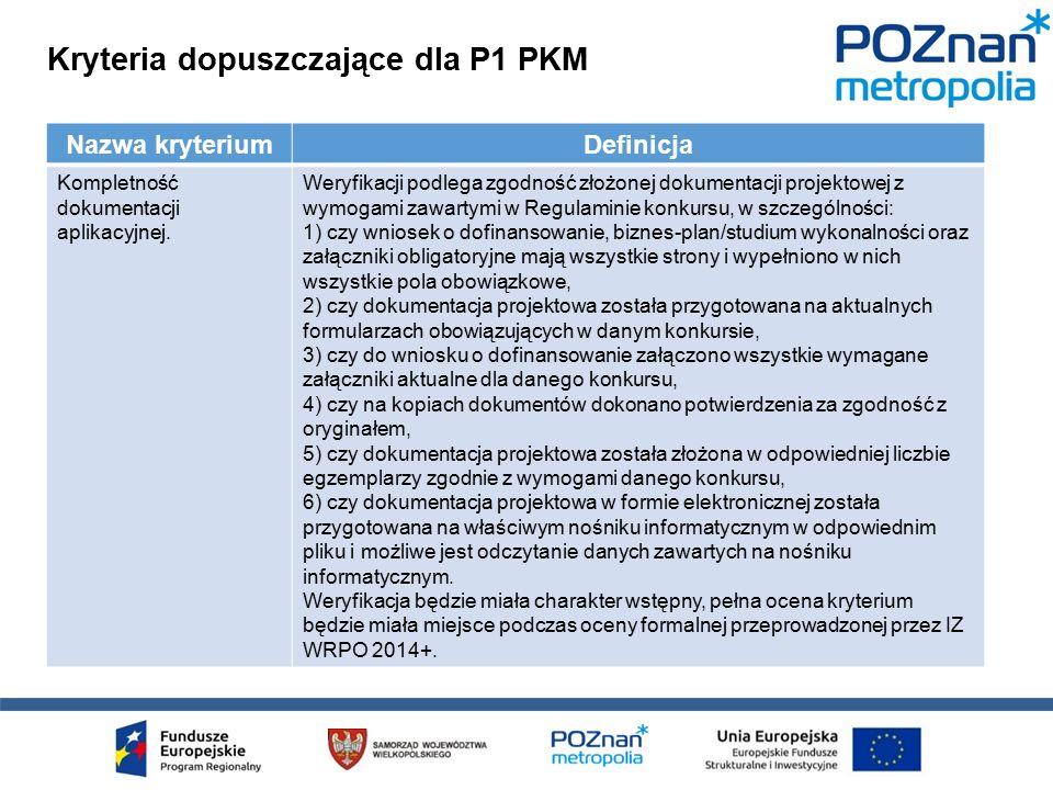 Kryteria dopuszczające dla P1 PKM Nazwa kryteriumDefinicja Kompletność dokumentacji aplikacyjnej.