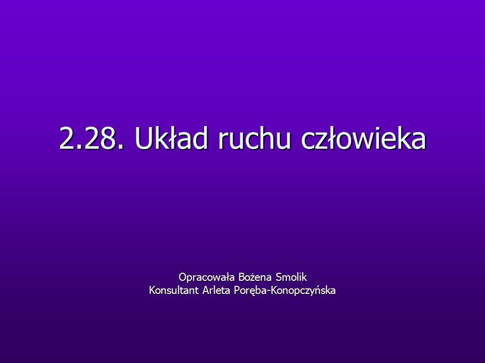 2.28. Układ ruchu człowieka Opracowała Bożena Smolik Konsultant Arleta Poręba-Konopczyńska