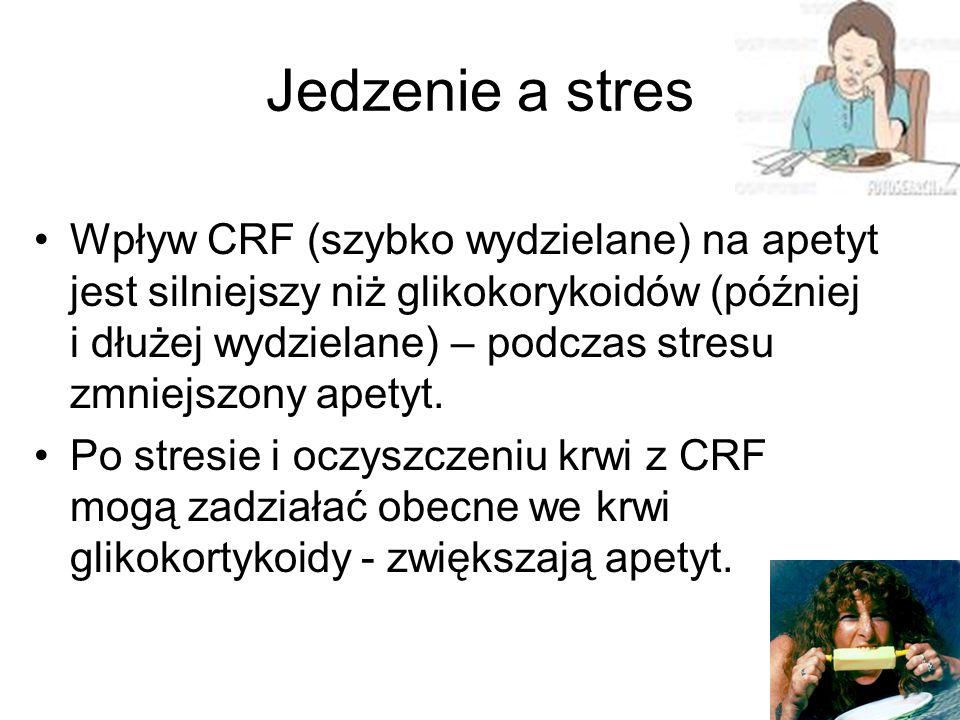 Jedzenie a stres Wpływ CRF (szybko wydzielane) na apetyt jest silniejszy niż glikokorykoidów (później i dłużej wydzielane) – podczas stresu zmniejszony apetyt.