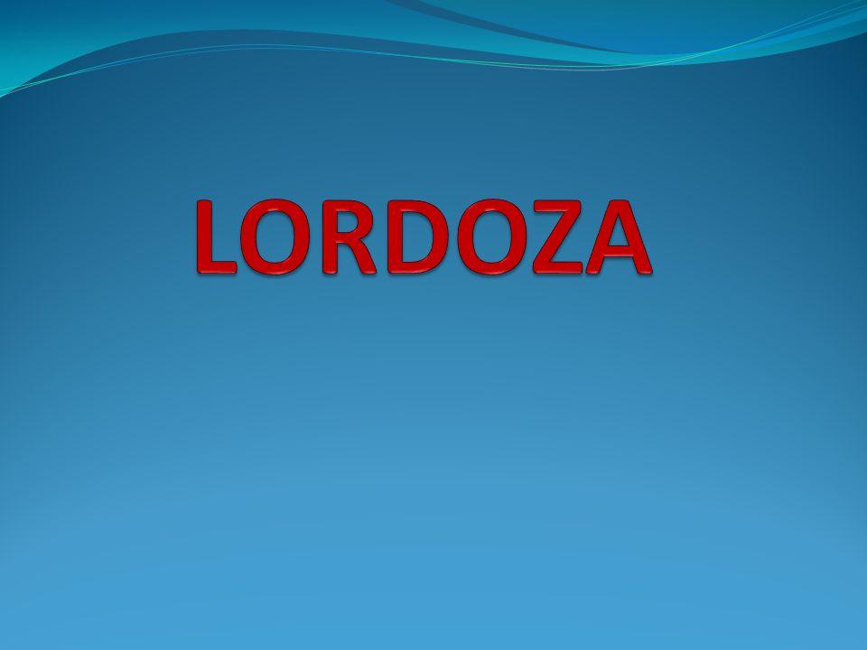Co to jest .Lordoza – łukowate wygięcie kręgosłupa w stronę brzuszną.