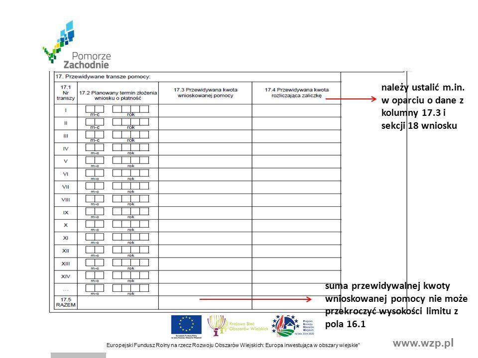 www.wzp.p l Europejski Fundusz Rolny na rzecz Rozwoju Obszarów Wiejskich: Europa inwestująca w obszary wiejskie suma przewidywalnej kwoty wnioskowanej pomocy nie może przekroczyć wysokości limitu z pola 16.1 należy ustalić m.in.