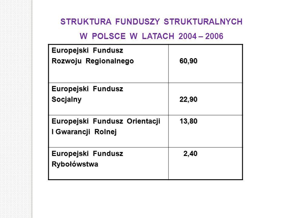 STRUKTURA FUNDUSZY STRUKTURALNYCH W POLSCE W LATACH 2004 – 2006 Europejski Fundusz Rozwoju Regionalnego 60,90 60,90 Europejski Fundusz Socjalny 22,90