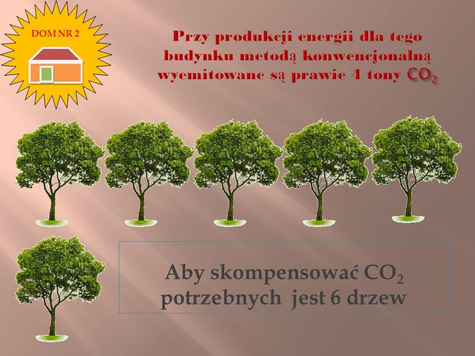 Aby skompensować CO 2 potrzebnych jest 6 drzew