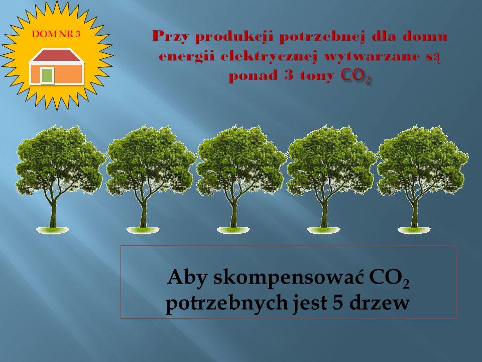 Aby skompensować CO 2 potrzebnych jest 5 drzew