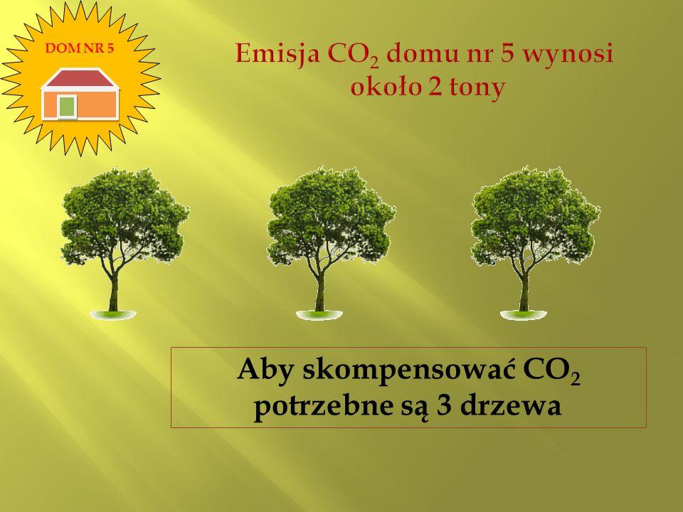 Aby skompensować CO 2 potrzebne są 3 drzewa