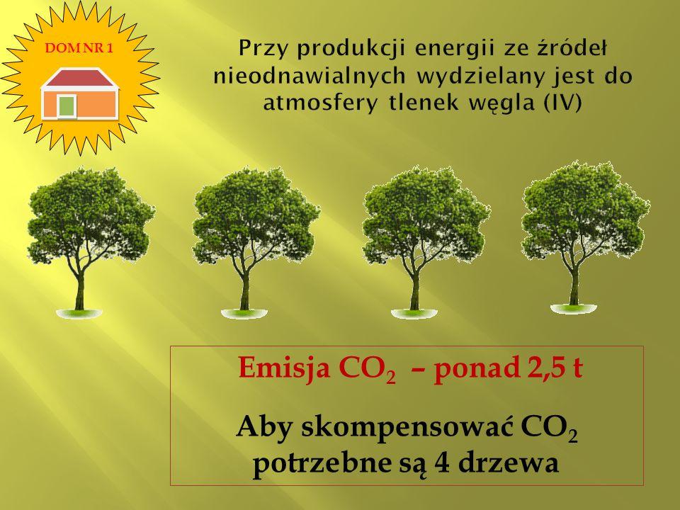 Emisja CO 2 – ponad 2,5 t Aby skompensować CO 2 potrzebne są 4 drzewa