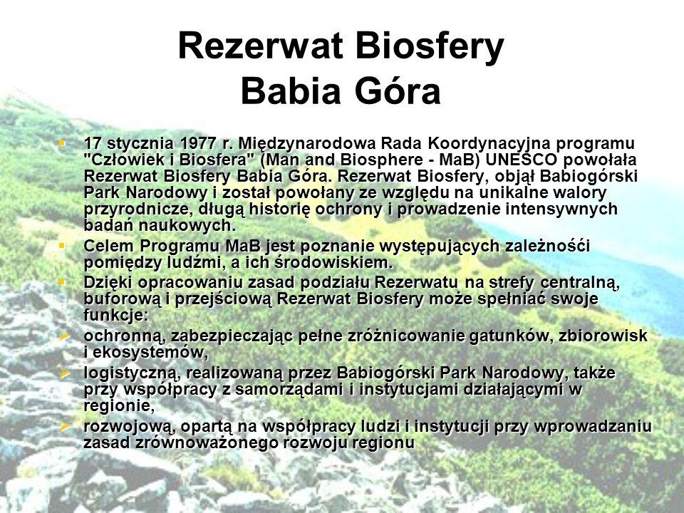 Rezerwat Biosfery Babia Góra  17 stycznia 1977 r.