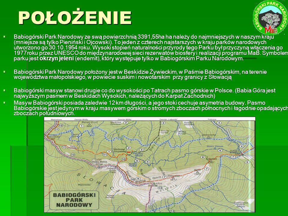 POŁOŻENIE  Babiogórski Park Narodowy ze swą powierzchnią 3391,55ha ha należy do najmniejszych w naszym kraju (mniejsze są tylko Pieniński i Ojcowski).