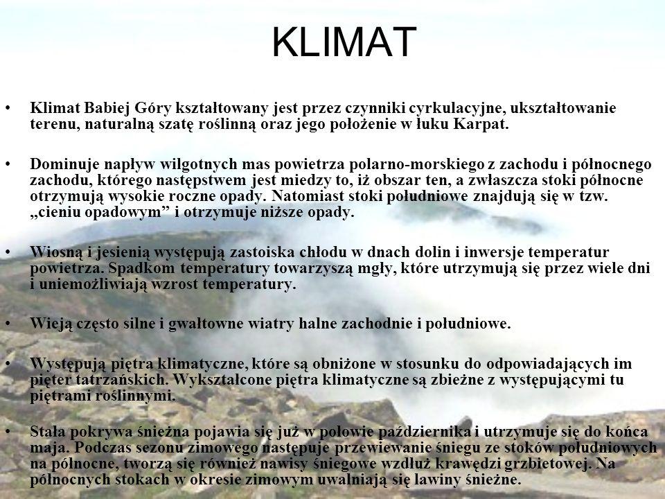 KLIMAT Klimat Babiej Góry kształtowany jest przez czynniki cyrkulacyjne, ukształtowanie terenu, naturalną szatę roślinną oraz jego położenie w łuku Karpat.