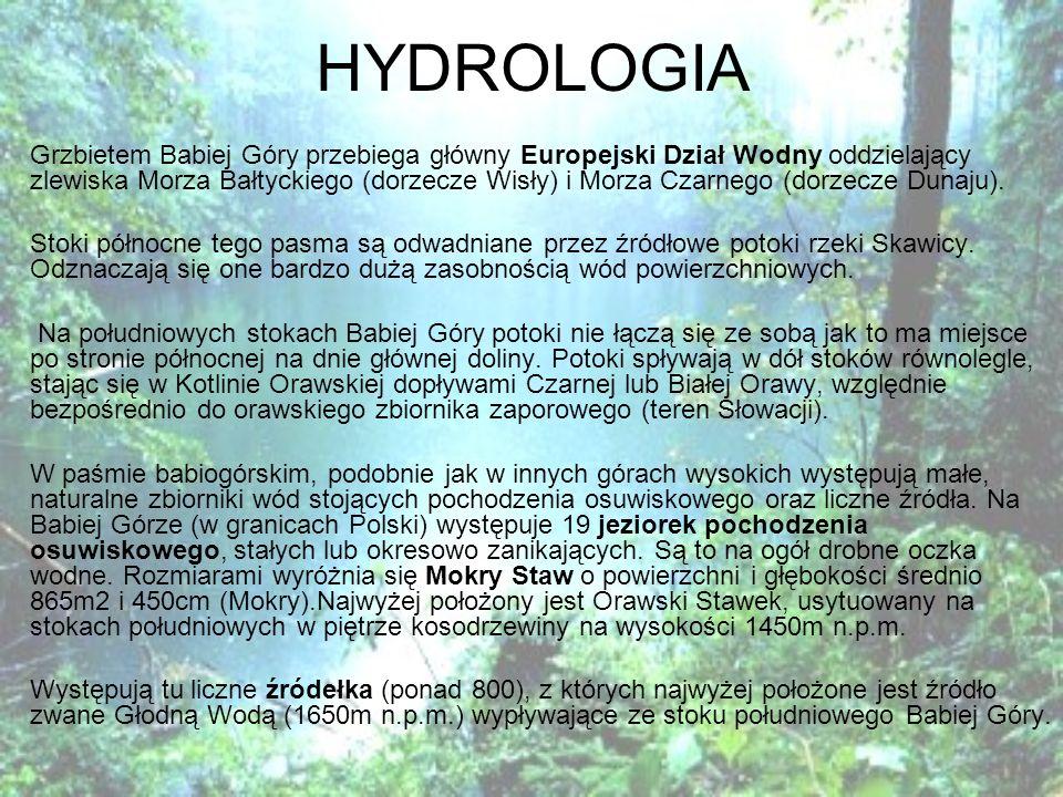 HYDROLOGIA Grzbietem Babiej Góry przebiega główny Europejski Dział Wodny oddzielający zlewiska Morza Bałtyckiego (dorzecze Wisły) i Morza Czarnego (dorzecze Dunaju).