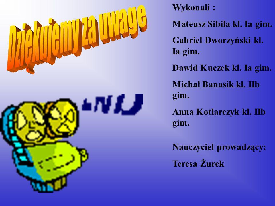 Wykonali : Mateusz Sibila kl. Ia gim. Gabriel Dworzyński kl. Ia gim. Dawid Kuczek kl. Ia gim. Michał Banasik kl. IIb gim. Anna Kotlarczyk kl. IIb gim.