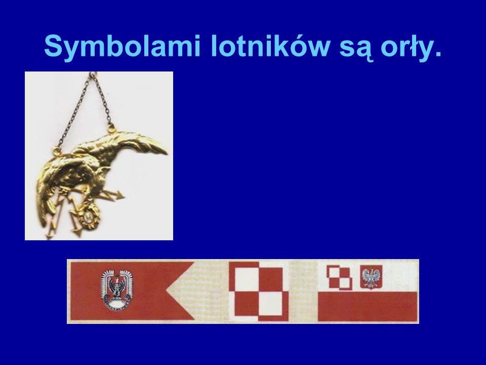 Odznaki tych, którzy są naziemną obsługą pilotów: mechaników i techników.