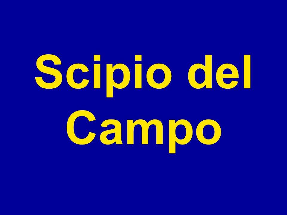 Scipio del Campo to pierwszy Polak, który miał licencję pilota przed 1914 rokiem.