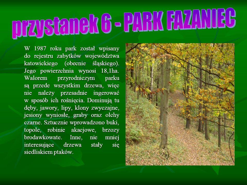 W 1987 roku park został wpisany do rejestru zabytków województwa katowickiego (obecnie śląskiego).