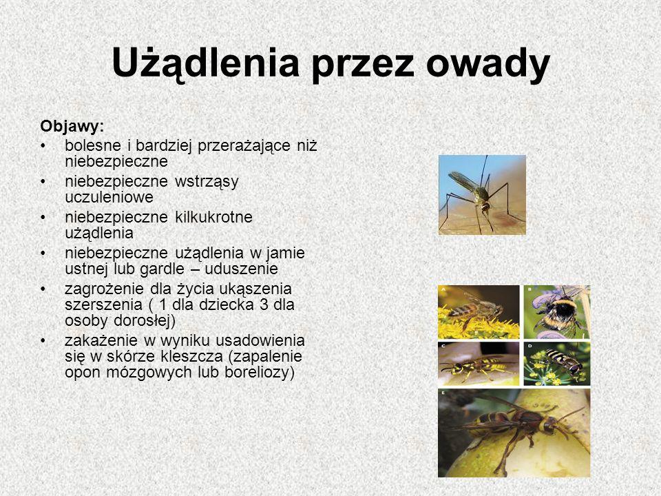 Użądlenia przez owady Objawy: bolesne i bardziej przerażające niż niebezpieczne niebezpieczne wstrząsy uczuleniowe niebezpieczne kilkukrotne użądlenia