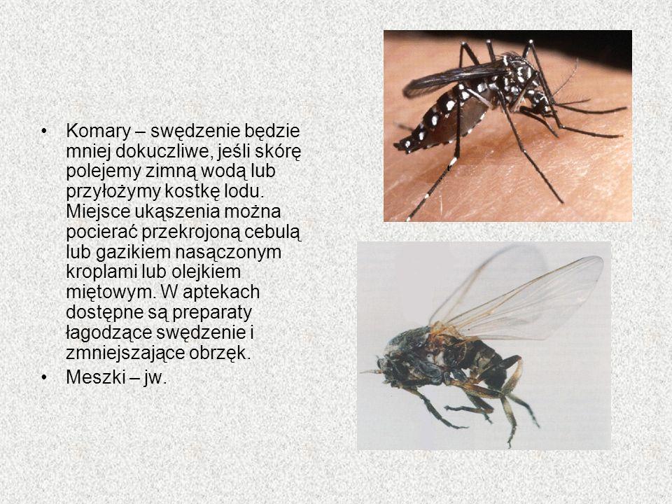 Komary – swędzenie będzie mniej dokuczliwe, jeśli skórę polejemy zimną wodą lub przyłożymy kostkę lodu. Miejsce ukąszenia można pocierać przekrojoną c