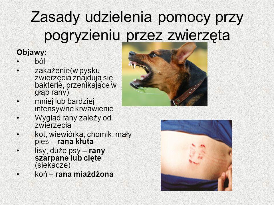 Zasady udzielenia pomocy przy pogryzieniu przez zwierzęta Objawy: ból zakażenie(w pysku zwierzęcia znajdują się bakterie, przenikające w głąb rany) mniej lub bardziej intensywne krwawienie Wygląd rany zależy od zwierzęcia kot, wiewiórka, chomik, mały pies – rana kłuta lisy, duże psy – rany szarpane lub cięte (siekacze) koń – rana miażdżona