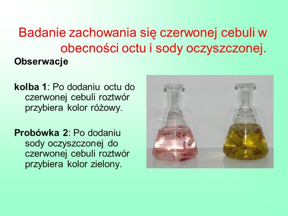 Badanie zachowania się czerwonej cebuli w obecności octu i sody oczyszczonej. Obserwacje kolba 1: Po dodaniu octu do czerwonej cebuli roztwór przybier