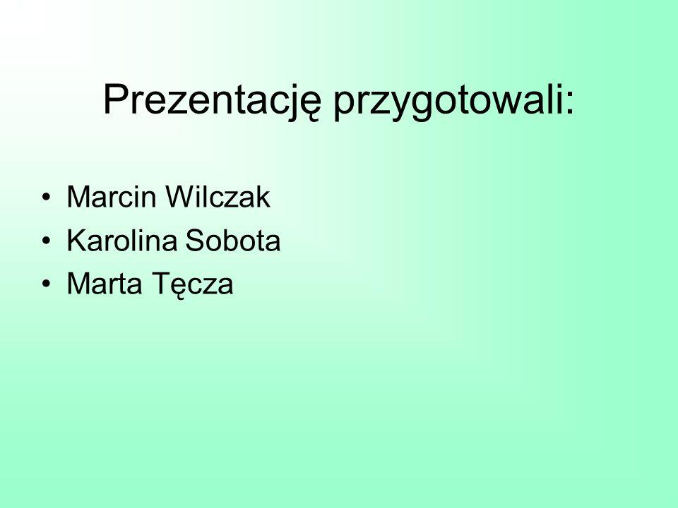 Prezentację przygotowali: Marcin Wilczak Karolina Sobota Marta Tęcza