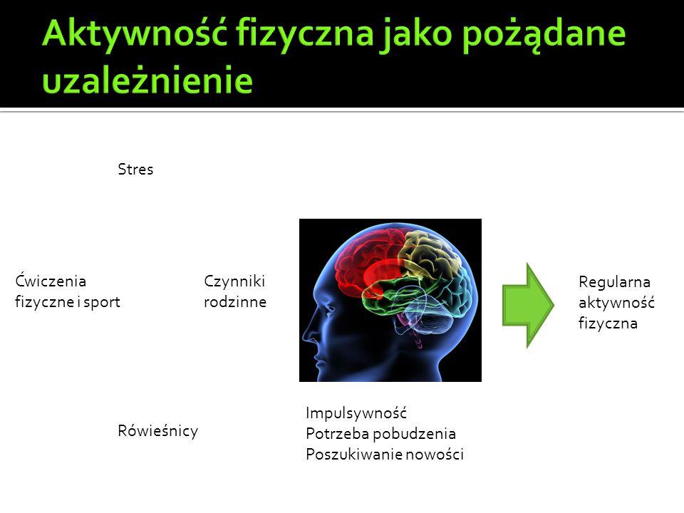 Ćwiczenia fizyczne i sport Stres Rówieśnicy Czynniki rodzinne Impulsywność Potrzeba pobudzenia Poszukiwanie nowości Regularna aktywność fizyczna