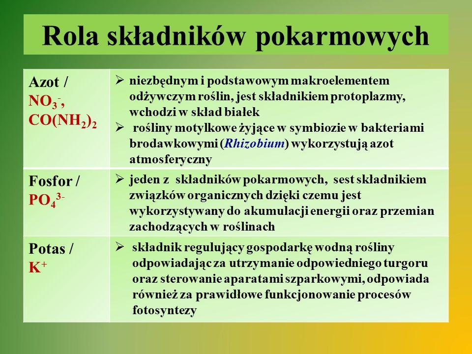 Rola składników pokarmowych Azot / NO 3 -, CO(NH 2 ) 2  niezbędnym i podstawowym makroelementem odżywczym roślin, jest składnikiem protoplazmy, wchod