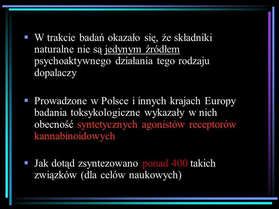 Dwa projekty badawcze wykonane dla Krajowego Biura Przeciwdziałania Narkomanii 1.