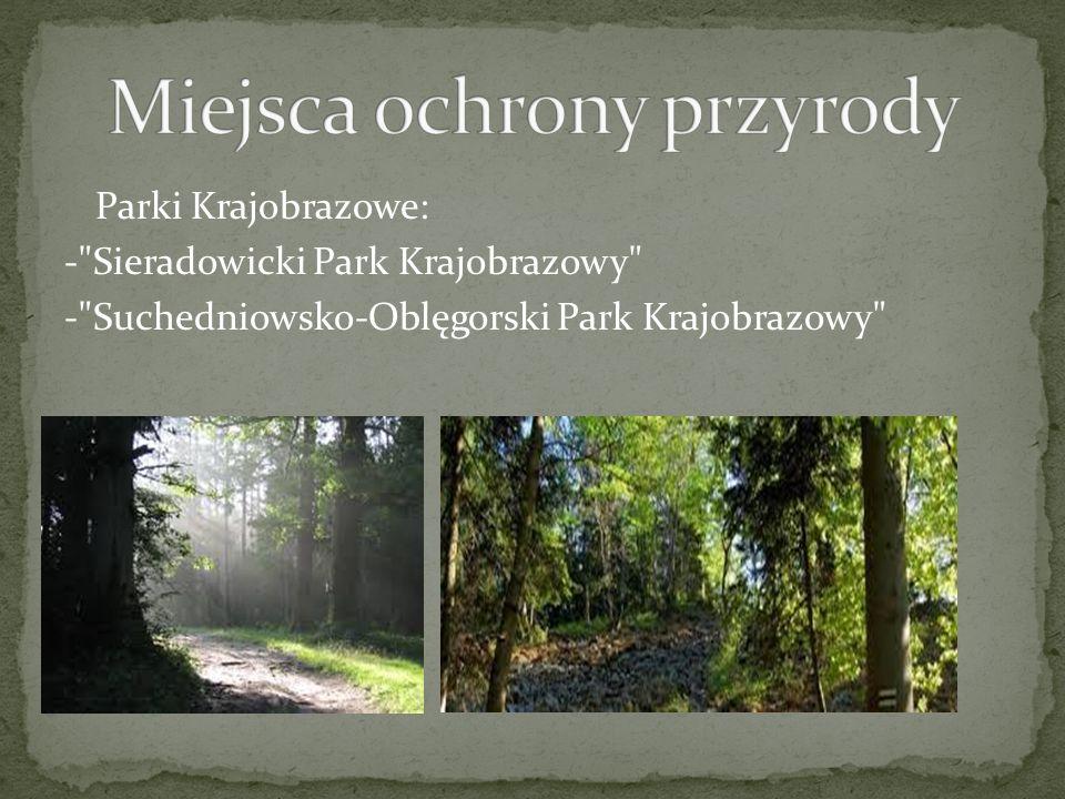 Parki Krajobrazowe: - Sieradowicki Park Krajobrazowy - Suchedniowsko-Oblęgorski Park Krajobrazowy