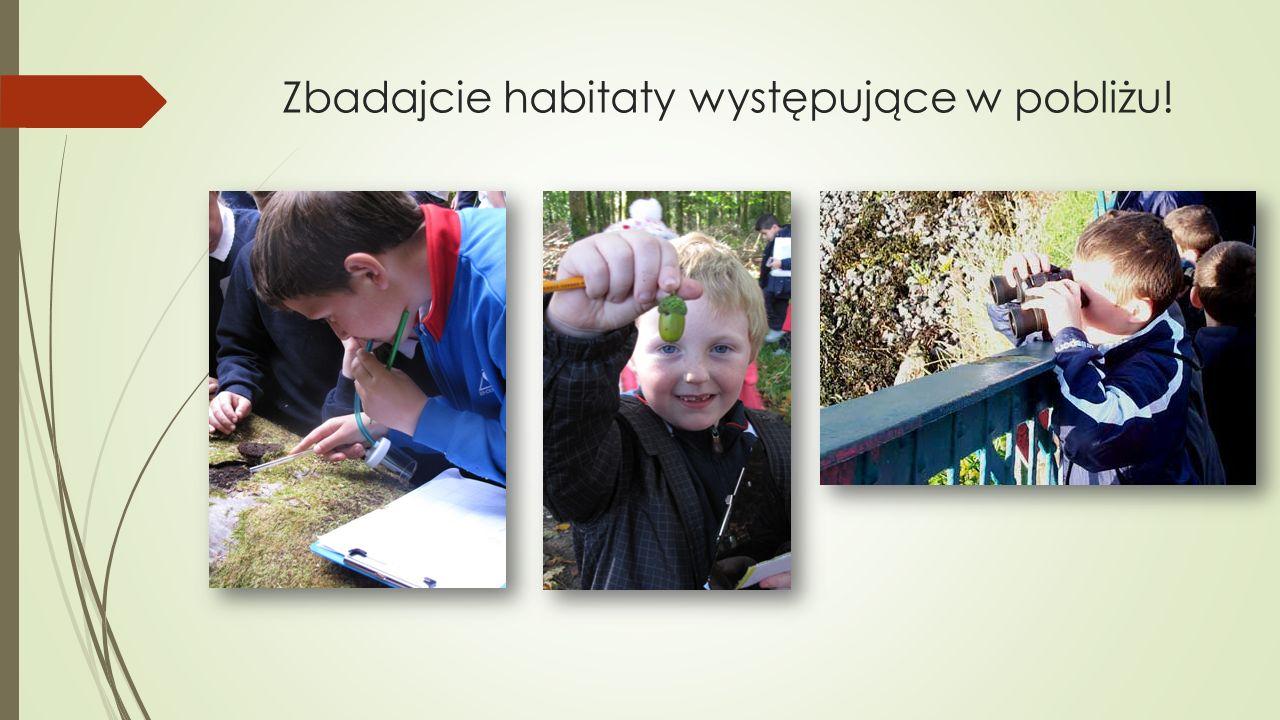 Zbadajcie habitaty występujące w pobliżu!