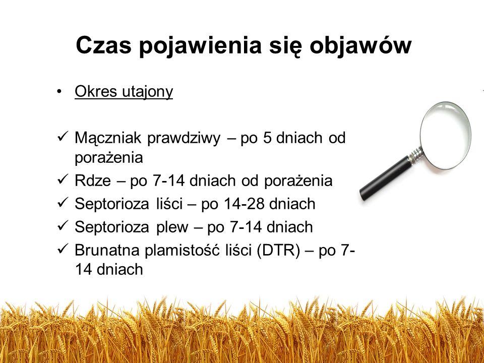 Czas pojawienia się objawów Okres utajony Mączniak prawdziwy – po 5 dniach od porażenia Rdze – po 7-14 dniach od porażenia Septorioza liści – po 14-28