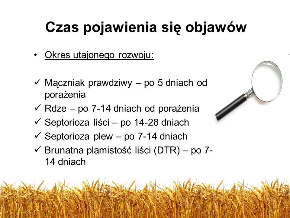 Czas pojawienia się objawów Okres utajonego rozwoju: Mączniak prawdziwy – po 5 dniach od porażenia Rdze – po 7-14 dniach od porażenia Septorioza liści