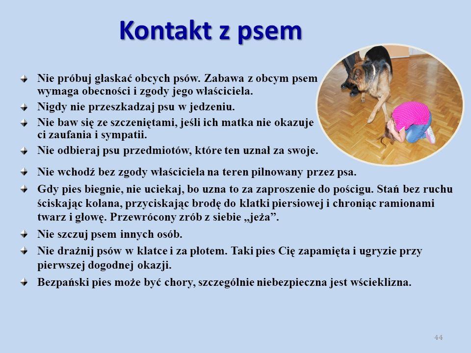 Kontakt z psem Nie wchodź bez zgody właściciela na teren pilnowany przez psa.