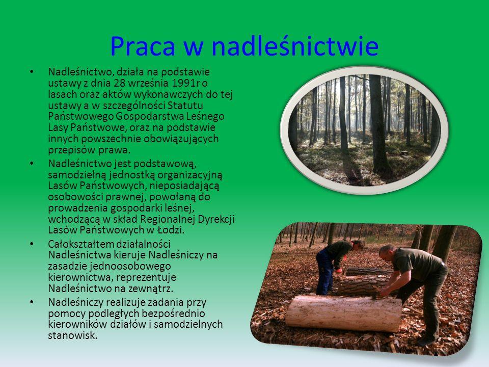 Pomniki przyrody w lesie spalskim Pomniki przyrody to zwykle pojedyncze okazy przyrody ożywionej bądź nieożywionej.