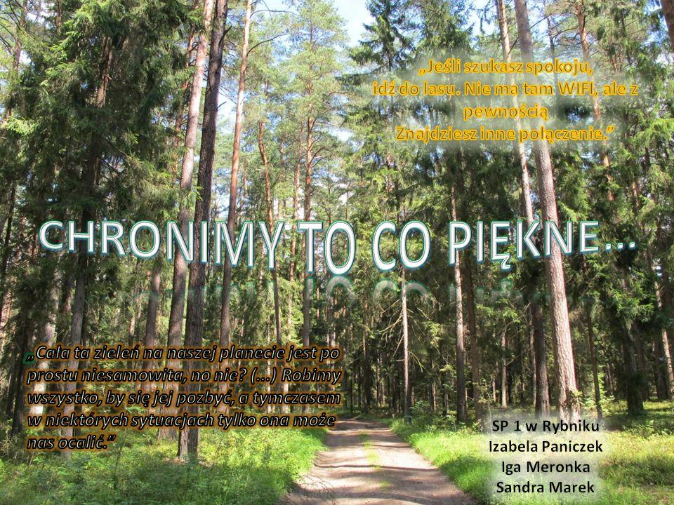 O Nadleśnictwie Rybnik Nadleśnictwo Rybnik należy do Regionalnej Dyrekcji Lasów Państwowych w Katowicach i składa się z czterech obrębów leśnych: Knurów, Paruszowiec, Rybnik oraz Żory.