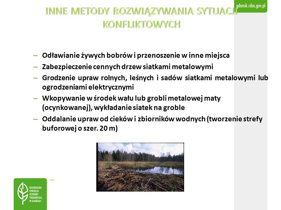 – Odławianie żywych bobrów i przenoszenie w inne miejsca – Zabezpieczenie cennych drzew siatkami metalowymi – Grodzenie upraw rolnych, leśnych i sadów