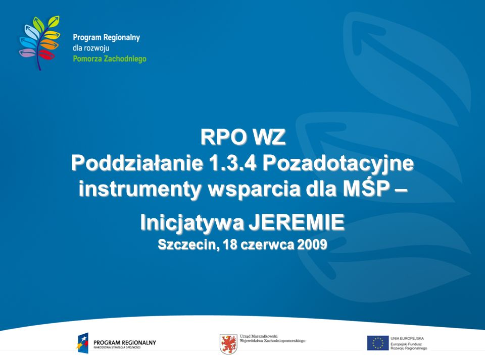12 Strategia Inwestycyjna – założenia (2) Inicjatywa JEREMIE powinna doprowadzić do wypracowania rozwiązań systemowych, których efektywne funkcjonowanie i rozwój będą możliwe w długim okresie (po 2015 roku).