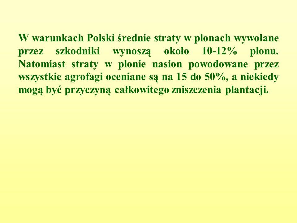 W warunkach Polski średnie straty w plonach wywołane przez szkodniki wynoszą około 10-12% plonu.