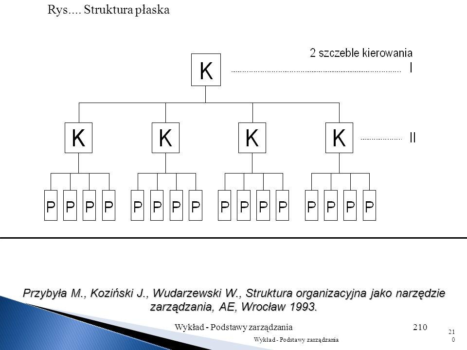 Struktura organizacyjna występuje w złożonych systemach działania, posiadających podmiotowo wyodrębniony system zarządzania, gdzie ma miejsce formaliz