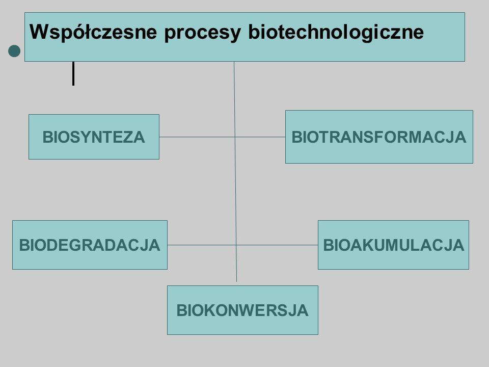Współczesne procesy biotechnologiczne BIOSYNTEZA BIODEGRADACJA BIOTRANSFORMACJA BIOAKUMULACJA BIOKONWERSJA