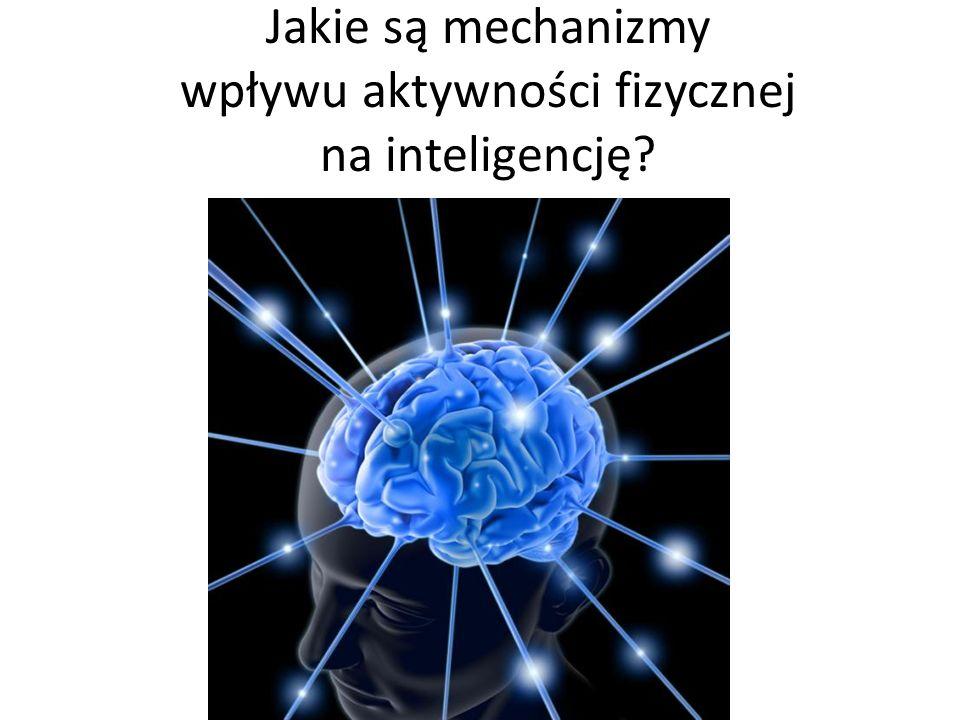 Jakie są mechanizmy wpływu aktywności fizycznej na inteligencję?