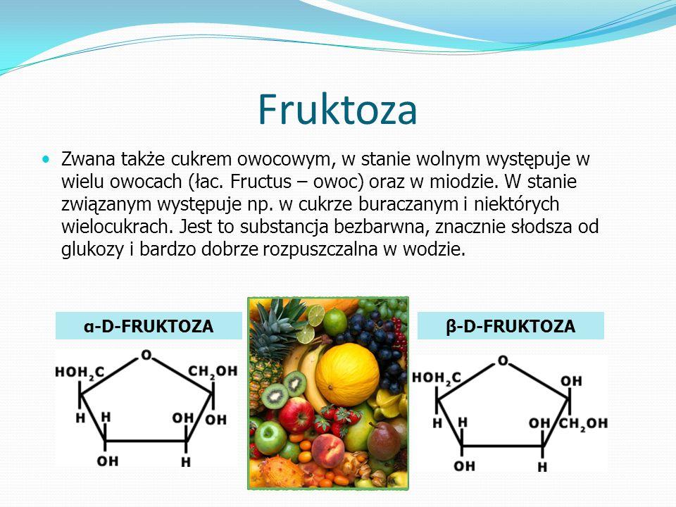 Fruktoza Zwana także cukrem owocowym, w stanie wolnym występuje w wielu owocach (łac.
