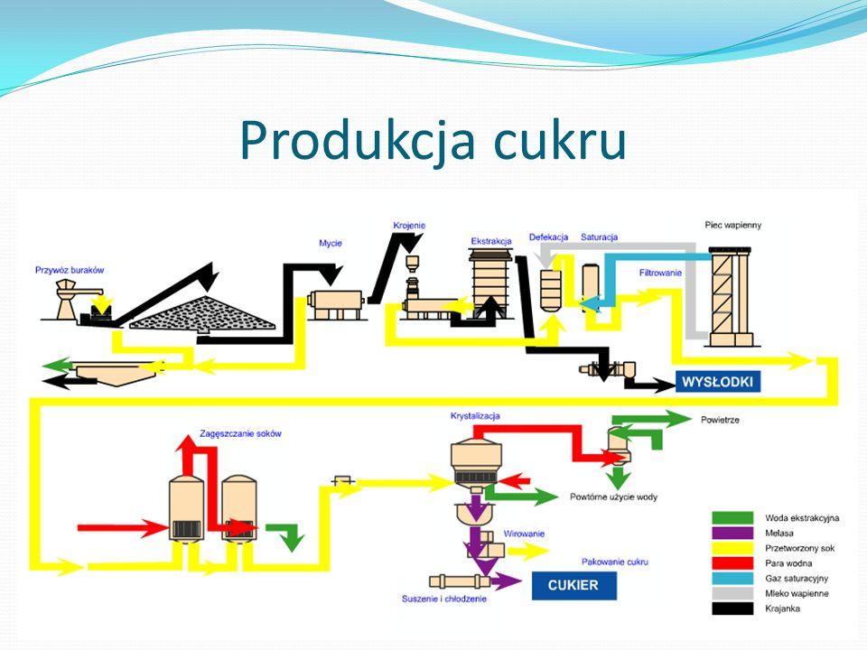 Produkcja cukru