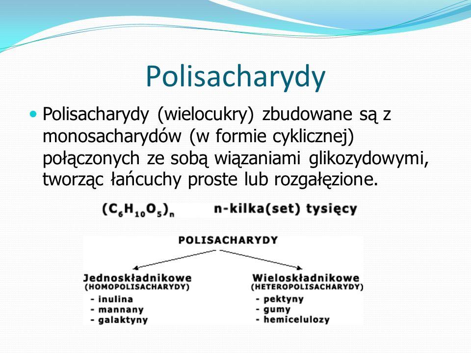 Polisacharydy Polisacharydy (wielocukry) zbudowane są z monosacharydów (w formie cyklicznej) połączonych ze sobą wiązaniami glikozydowymi, tworząc łańcuchy proste lub rozgałęzione.