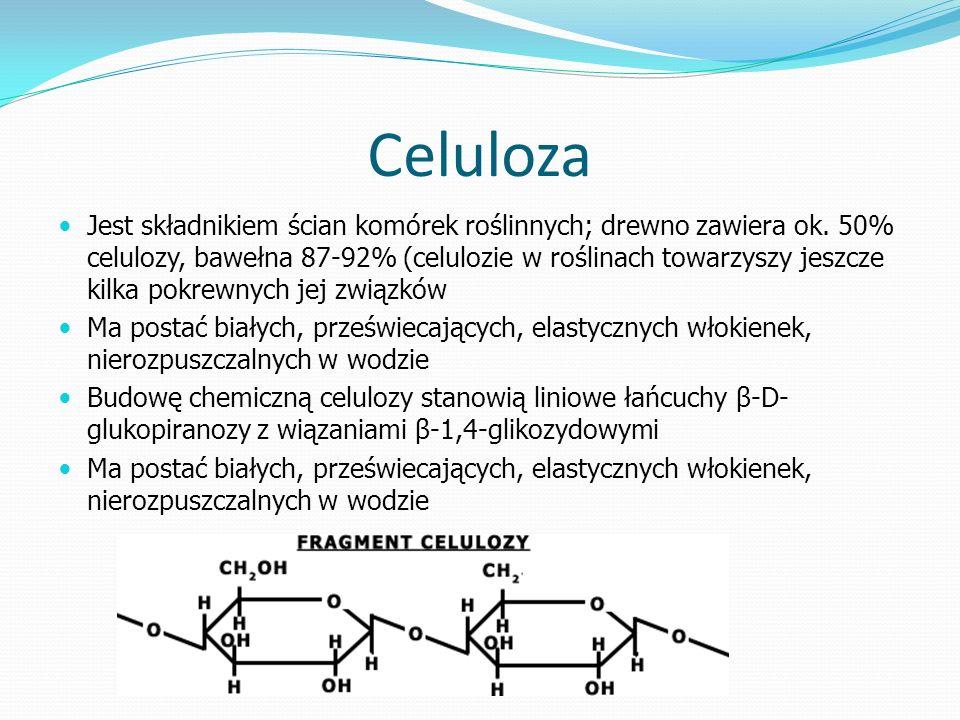 Celuloza Jest składnikiem ścian komórek roślinnych; drewno zawiera ok.