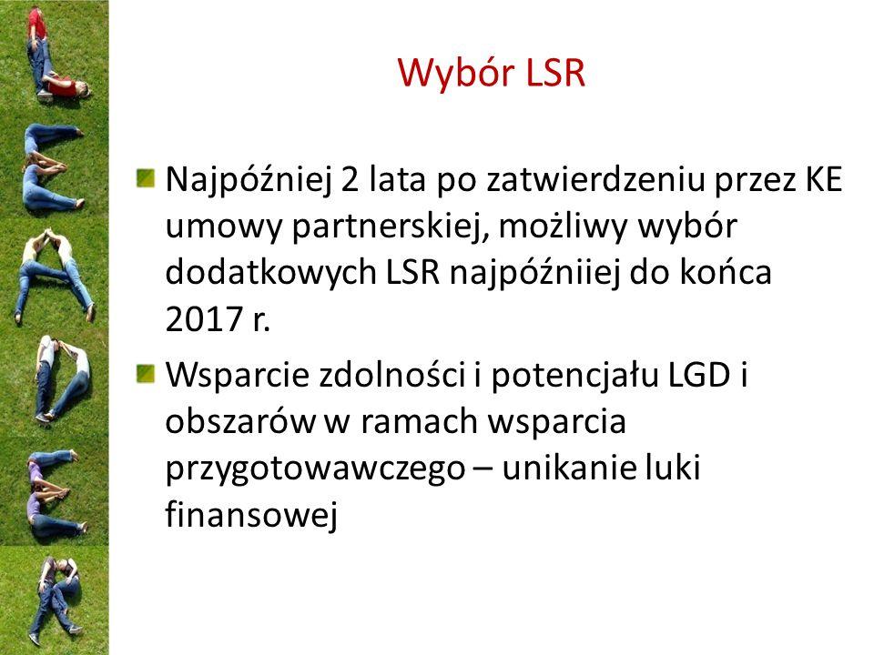 Wybór LSR Najpóźniej 2 lata po zatwierdzeniu przez KE umowy partnerskiej, możliwy wybór dodatkowych LSR najpóźniiej do końca 2017 r.