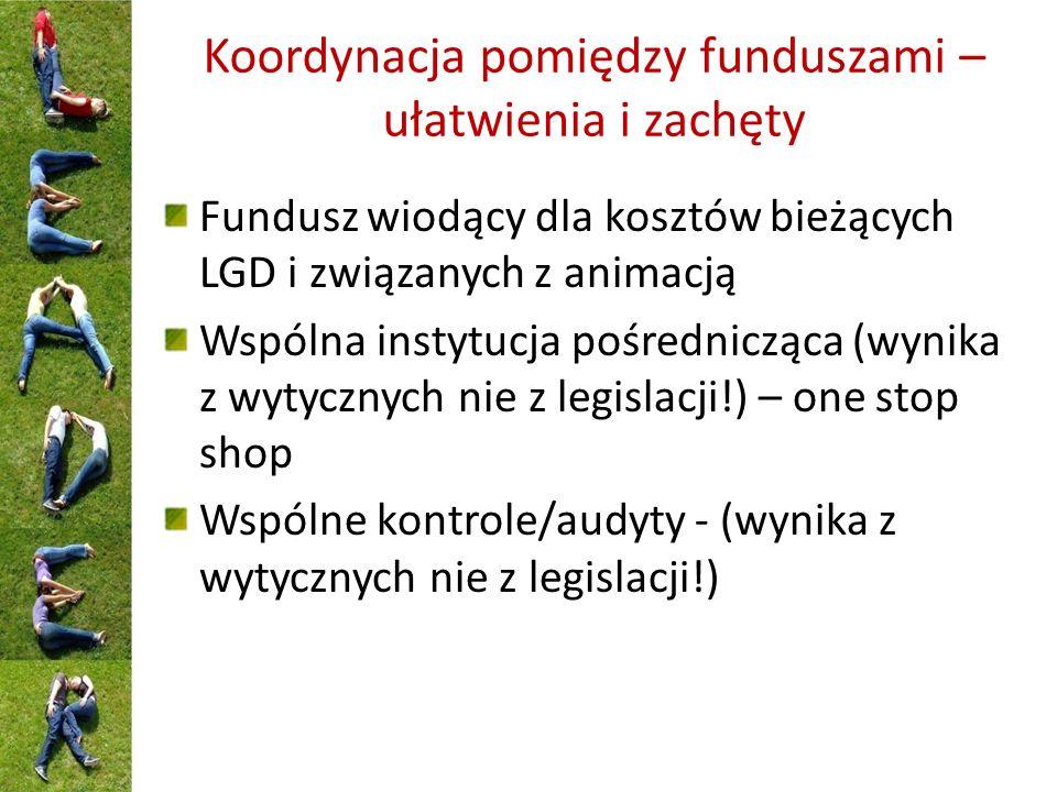 Koordynacja pomiędzy funduszami – ułatwienia i zachęty Fundusz wiodący dla kosztów bieżących LGD i związanych z animacją Wspólna instytucja pośrednicząca (wynika z wytycznych nie z legislacji!) – one stop shop Wspólne kontrole/audyty - (wynika z wytycznych nie z legislacji!)